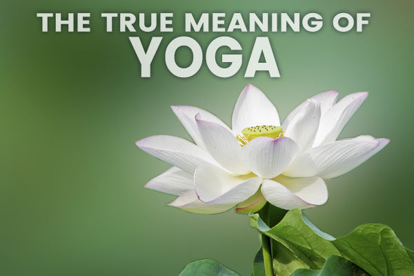 meaning of yoga